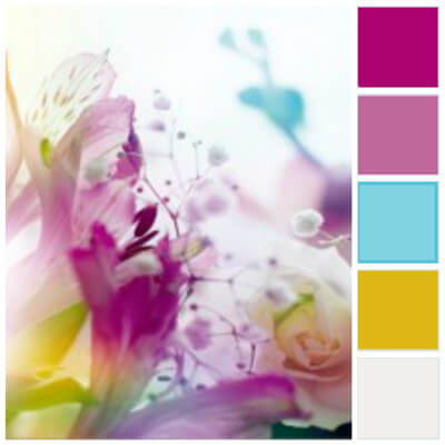 Návrh loga lasoma - paleta 1